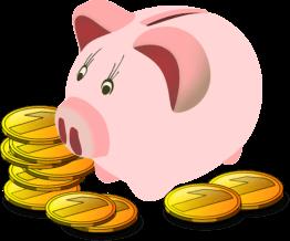 Wie viel Geld für Homegym