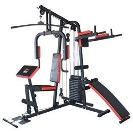 TrainHard HomeGym Multistation Fitnesscenter mit 65KG Gewichten inkl. Dipstation, Beinhebe & Sit-Up Bank -
